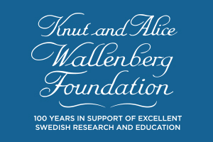 Image result for knut and alice wallenberg foundation logo